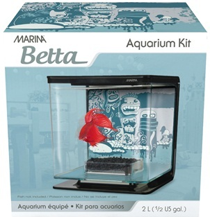 Marina Betta Kit, Wild Thing