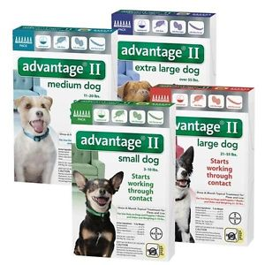 Advantage II (1-10 lb. dogs)