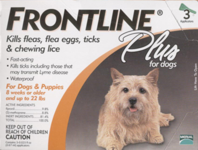 Frontline Plus (up to 22 lb. dogs)