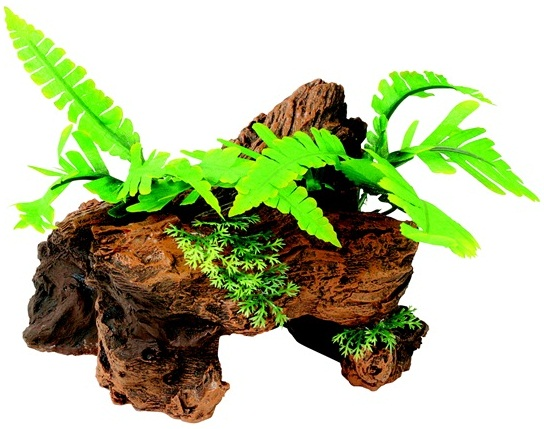 Malaysian Decorative Driftwood with Plants Small