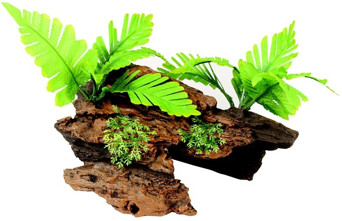 Malaysian Decorative Driftwood with Plants, Medium