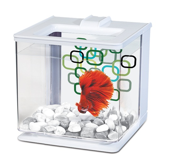 Betta EZ Care Aquarium White