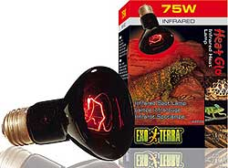 Exo Terra Heat Glo Infrared Heat Lamps