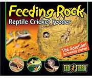 Exo Terra Feeding Rock Reptile Cricket Feeder