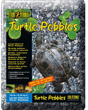 Exo Terra Turtle Pebbles Large