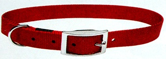 Single Ply Nylon Dog Collar with Buckle (Red)