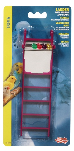 Living World Ladder with Mirror and Beads