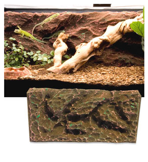 T-Rex Vivarium Foam Systems Rock Ridge Background
