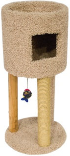 Kitty Condo with Playground