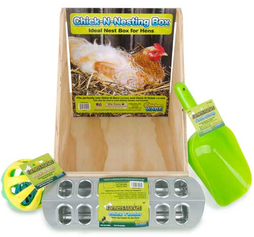 Chicken Feed-N-Fun Kit
